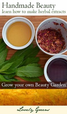 Herbal Beauty DIY - Extract the goodness from garden grown beauty herbs, flowers, and roots for use in lotions, creams, soaps, balms, and more!  #beauty #skincare #herbal #natural #gardening