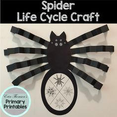 Spider Life Cycle Craft Elementary Science, Teaching Science, Science Activities, Elementary Schools, Cycle Pictures, Life Cycle Craft, Cut And Paste, Life Cycles, Spiders