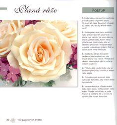 Návod na výrobu plané růže, ČÁST PRVNÍ