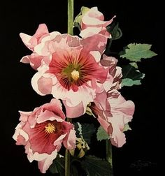 Hollyhock by jacqueline gnott - one of my favorite watercolor artists