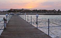 Marsa Alam, Exotic Fish, Red Sea, Sandy Beaches, Holiday Destinations, Railroad Tracks, Sidewalk, Adventure, History