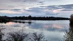 Peterborough - Ferry meadows - lake view - Dec 2014