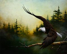 Thanksgiving Assignment #1  American Bald Eagle Painting