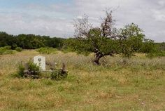 Acton State Historic Site, and Davy Crockett's Widow, Elizabeth Patton Crockett; Early American, Mexican American, American War, Davy Crockett, Texas Pride, Texas History, Historical Sites, Historical Photos, Texas Homes