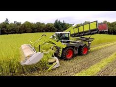 Harvesting hemp #jasenhemp #hemp #cannabis    Claas Xerion 4000   Vezelhennep oogst   DunAgro