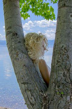 Summer Colors by Sotiris Filippou Decor Ideas, Gift Ideas, Summer Colors, Christmas Art, Fine Art Photography, Unique Art, Fine Art America, Iris, Postcards