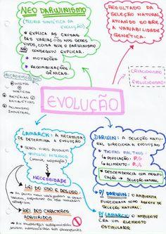Study Methods, Study Tips, School Lessons, School Hacks, Mental Map, Notebook Organization, Vestibular, Lettering Tutorial, Study Inspiration