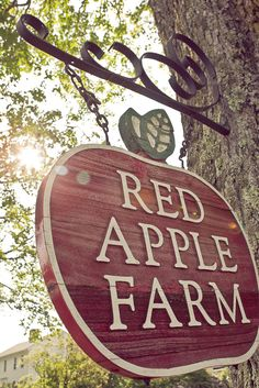 Boro Creative Visions: Jesse and Danielle, Red Apple Farm, MA Wedding Photography