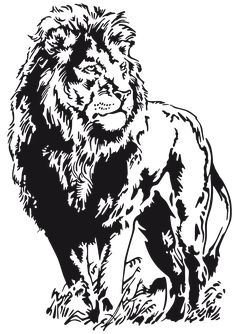 Animal Sketches, Animal Drawings, Drawing Sketches, Art Drawings, Animal Stencil, Stencil Art, Lion Stencil, Stenciling, Silhouette Lion