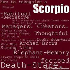 The most important thing to know about Scorpio is that they are magnetic. That's why it is so important that they consciously decide to soar like the sign's mythical phoenix and leave the sting of the scorpion only to those sit. All About Scorpio, Scorpio Love, Scorpio Girl, Scorpio Traits, Scorpio Zodiac Facts, Scorpio Quotes, Scorpio Personality, Scorpio Star, Astrology Scorpio