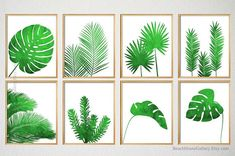 Green Palm Leaves Art Set of Monstera Plant Leaf Wall Art, Boho Wall Art, Tropical Decor, Green D Green Wall Art, Leaf Wall Art, Leaf Art, Diy Wall Art, Tropical Colors, Tropical Decor, Tropical Leaves, Palm Frond Art, Palm Fronds