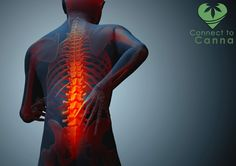 Chronic pain is one of the most difficult ailments to manage. Research is showing that marijuana may interact with your pain-signaling cells. You can cure chronic pain with the help of marijuana treatment with us at http://www.connect2canna.com/contact/ #MarijuanaTreatment #Medicines