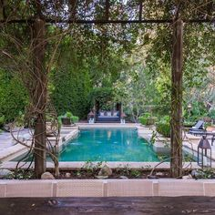 The grounds at #1410davies in #BeverlyHills are so lush and beautiful! I love this view of the pool from one of the #outdoordining areas. To learn more please visit #linkinbio | cindyambuehl.luxury | #luxuryrealestate #realestate #landscaping #poolside #luxuryhome #homeforsale #viewproperty #interiordesign  #naturallight #theagencyre