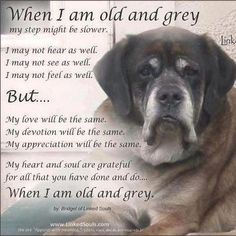 when im old and grey