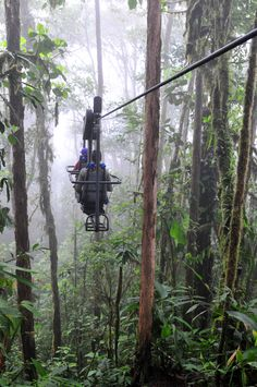 Ride the Sky Bike through an Andean cloud forest at Ecuador's remote Mashpi Lodge.