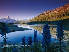 Hiking Berner Oberland Traverse and seeing the Alps, Bernese Oberland, Switzerland Switzerland Destinations, Switzerland Tourism, Geneva Switzerland, Art Et Nature, Image Nature, Beautiful World, Beautiful Places, Beautiful Scenery, Saas Fee