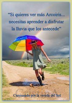 https://www.facebook.com/pages/Caminando-por-la-vereda-del-Sol/295731910617292?ref=hl