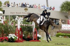 Show jumping at Palm Beach Polo Center