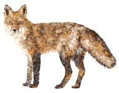 Finally finished my tedious side project! Geometric fox made constructed out of triangles. Whitney Anderson, Fox Illustration, Illustrations, Geometric Fox, Line Art, Body Art, Moose Art, Behance, Diy Crafts