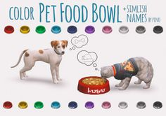 Colorful Pet Food Bowl for The Sims 4 by Pino