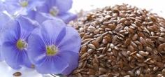 How does flaxseed lower cholesterol level, find out more at http://remediesforbellyfat.com/wp/do-you-know-your-flaxseed-health-benefits/