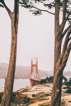 Golden Gate Bridge in San Francisco. See the top 10 things to do in San Francisco on avenlylanetravel.com #sanfrancisco #travelblog #usatravel #wanderlust #avenlylane #avenlylanetravel