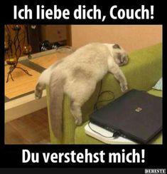 Ich liebe dich, Couch! | Lustige Bilder, Sprüche, Witze, echt lustig