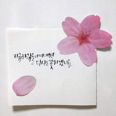 평소 꽃이라는 단어를 좋아해서, 꽃과 관련된 글귀들도 참 좋아한다. 그래서 적어본 꽃, 일상 손글씨들. 꽃... Brush Lettering, Lettering Design, Korean Letters, Korean Writing, Korean Art, Great Words, Caligraphy, Watercolor Cards, Wise Quotes