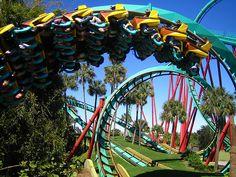 Bush Garden, Tampa, Florida. Been there....