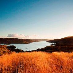 Schotland, setting van tientallen kaskrakers. Bekend om zijn historische kastelen en prachtige meren... Een prachtige vakantie in het verschiet!
