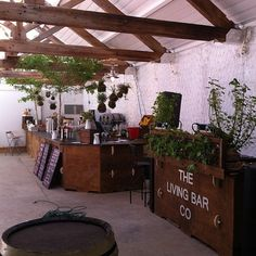 Frome Feast Street - First trial of the Kokedama Bar!