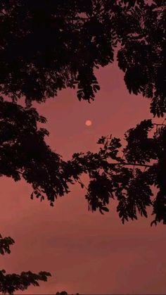 Night Sky Wallpaper, Scenery Wallpaper, Nature Wallpaper, Night Scenery, Anime Scenery, Aesthetic Photography Grunge, Beautiful Photos Of Nature, Sky Aesthetic, Sunset Photography