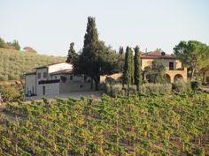 Tuscan hillside near San Donato in Poggio.Osteria Numero Uno Piazza Malaspina San Donato in Poggio www.osterianumerounosandonato.it