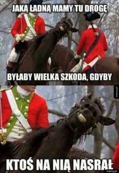 Wtf Funny, Funny Memes, Hilarious, Weekend Humor, Quality Memes, Nanami, Horse Riding, Deadpool, Haha