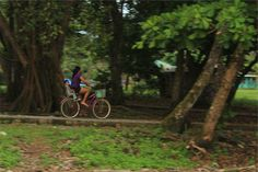 bike, bicycle, cyclist, baby, child, kid, mother, woman, people, park, path, trees