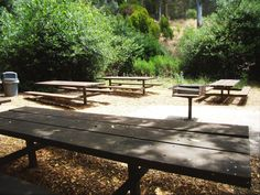 WIL: Bay Picnic Area (100) -  seven 10-ft picnic tables and one double BBQ. A drinking fountain and 2 chemical toilets are nearby. This very shady site is adjacent to a lawn area. It is an under-used area just outside the central part of the park and is ideal for weddings. INTERACTIVE PLAY EQUIPMENT, Bounce houses, Dunk Tanks, etc. are NOT permitted at Wildcat/Alvarado park.