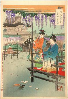 Ogata Gekko: Wisterias at Kameido — Kameido Fuji - Japanese Art Open Database