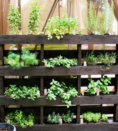 Believe it or not, this freestanding vertical garden was crafted using a leftover wooden shipping pallet! To re-create on your own patio, wash your pallet with bleach and sand it down, then add a wood frame at the bottom to attach to the ground supports. Stain the wood and staple a fabric weed barrier between each shelf. Fill with soil and plant herbs or flowers./