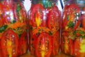 Page 3, Conservation, Stuffed Peppers, Vegetables, Food, Self, Canning, Salads, Stuffed Pepper