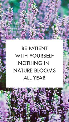 """Be patient with yourself nothing in Nature blooms all year"" cute flower lavender quote inspirational background wallpaper you can download for free on the blog! For any device; mobile, desktop, iphone, android!"