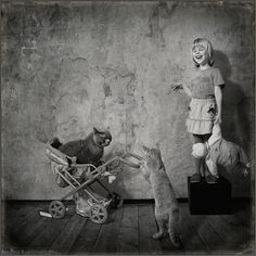 Ongoing Friendship Between a Girl and Her Adorable Cats - My Modern Metropolis
