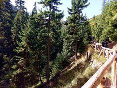 Karpacz na weekend – Storyworld W Hotel, Trekking, Country Roads, Hiking