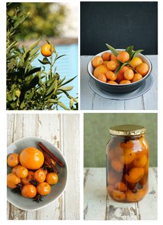 1000+ images about Things to Make with All of My Oranges ...