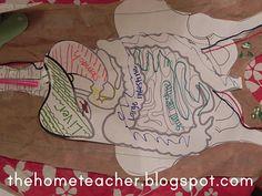 The Home Teacher: Human Body: Printables