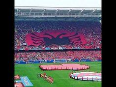 Albanian Supporter France Euro2016. Tifozet Kuq e Zi ne France
