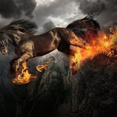 Samhain - The púca (or pooka, phouka, phooca, púka; Irish for goblin) is a creature of Irish folklore and Welsh mythology. It is a shapeshifter, often seen in the form of a black horse which talks.