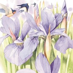 Kaarten - marjolein bastin | Hallmark Watercolor Flowers, Watercolor Art, Iris Art, Marjolein Bastin, Nature Artists, Dutch Artists, Nature Paintings, Flower Art, Illustrators