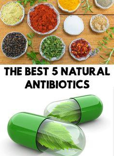 Imagini pentru best natural antibiotics image
