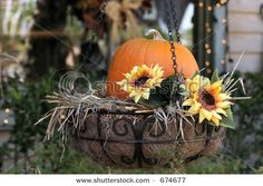 more Autumn inspired hanging baskets