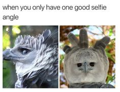 and  i don't  have  any  good  selfie angles